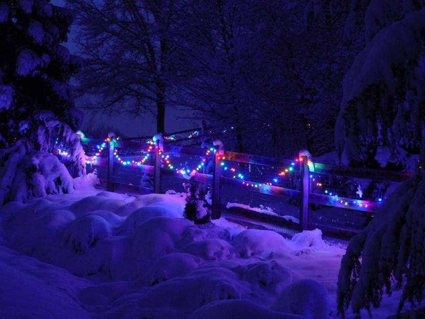 christmas lights on wood fence